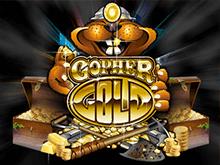 Играть на деньги в слот-автомат Gopher Gold